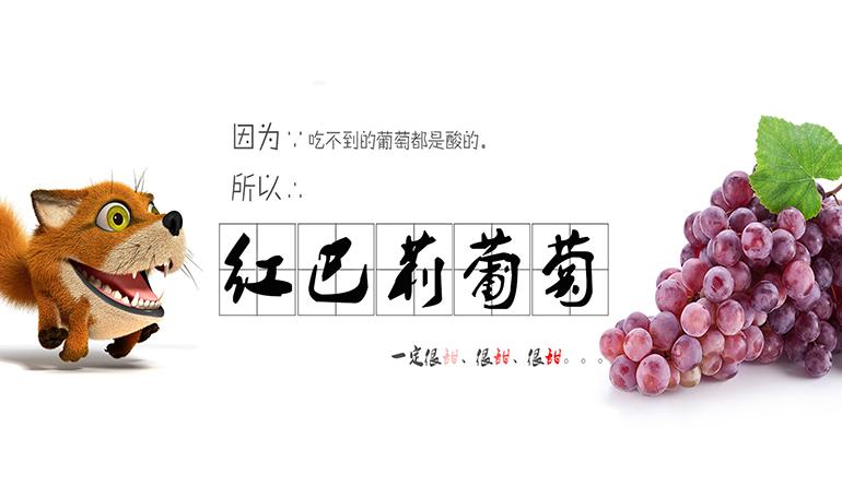合肥市互联网+现代农业综合信息网-banner1