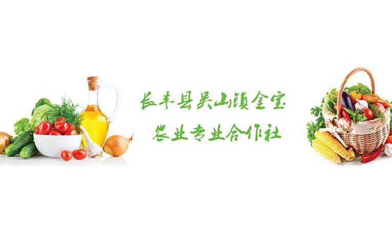 合肥市互联网+现代农业综合信息网-banner3