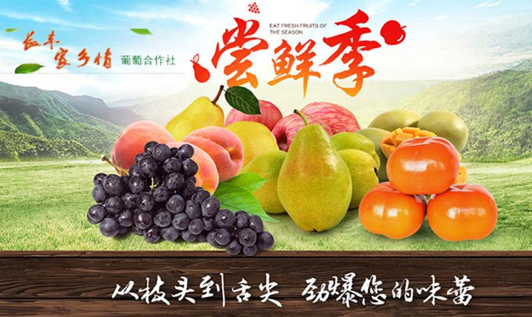 合肥市互联网+现代农业综合信息网-banner4